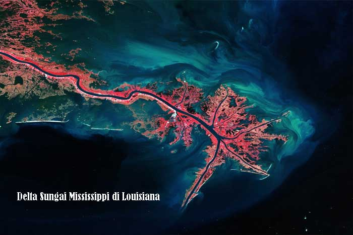 Delta Sungai Mississippi di Louisiana